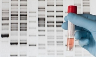 Retention of man's DNA, fingerprints and photo 'violation of privacy'