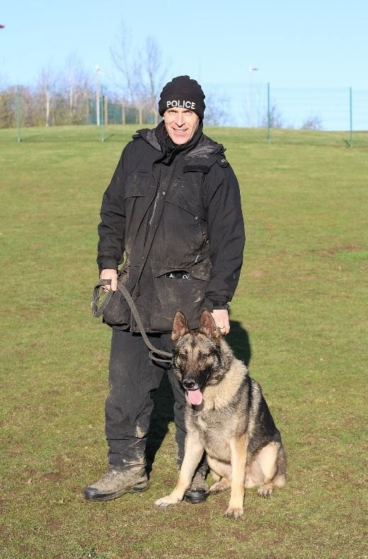 Stab victim: Police dog Audi with handler PC Karl Mander in training