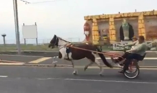 Concerned motorists call police over high speed horse race
