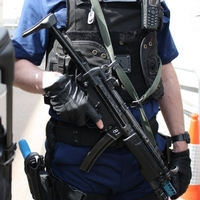 Concern over possible removal of armed officers from high profile targets