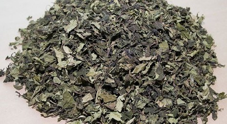 Khat 'will remain a banned substance'