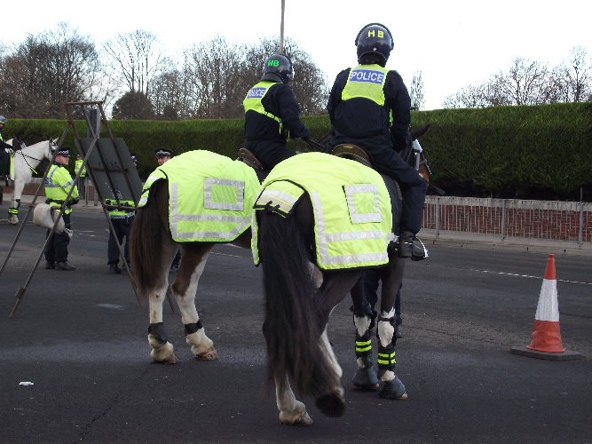 Police Horse Sausage Roll: Man Faces Court