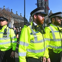 Met pours cold water on Ukip's 'policing by cannon' theory