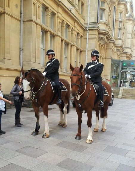 Mounted units 'vital to increasing police trust'