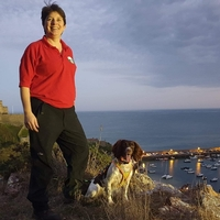 £1m fund to train search dogs to track missing dementia sufferers