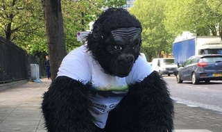 'Gorilla man' officer over half way through London Marathon