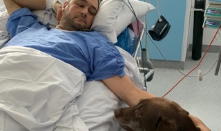 We've got this licked: Labrador Diesel at the hospital bedside of his 'master', PC Gareth Phillips