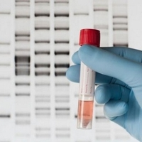 Government department to access DNA database in bid to close 'fake dads' paternity loophole