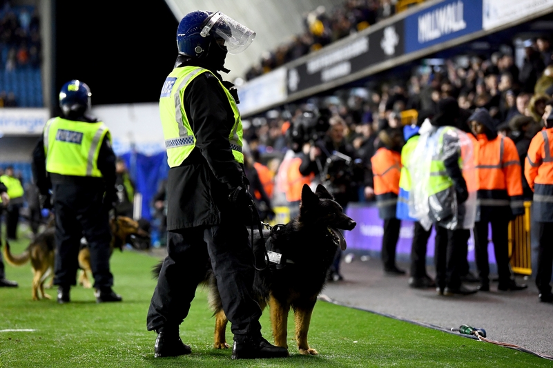 On guard: Police dogs on the pitch after the FA Cup fourth round match at The Den, London